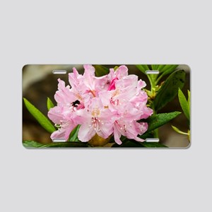 Rhododendron macrophyllum Aluminum License Plate