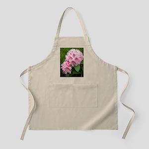 Rhododendron 'Albert Schweitzer' Apron