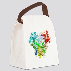 RNA polymerase from Norwalk virus Canvas Lunch Bag