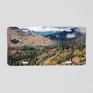Regenerating forest, Washin Aluminum License Plate