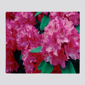 Rhododendron 'Cynthia' Throw Blanket