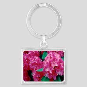 Rhododendron 'Cynthia' Landscape Keychain