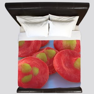 Red blood cells with malaria, artwork King Duvet