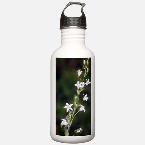 Rampion (Campanula rap Water Bottle