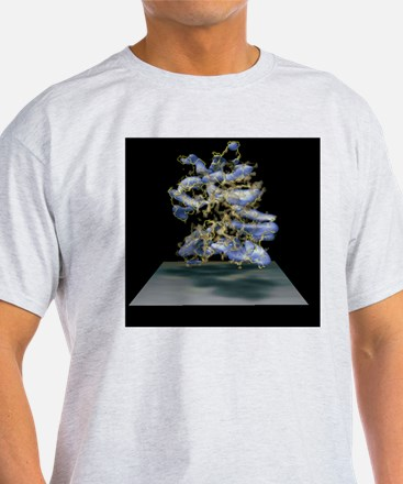 Protein structure and electron densi T-Shirt