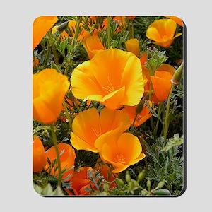 Poppies (Eschscholzia californica) Mousepad