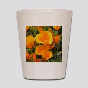 Poppies (Eschscholzia californica) Shot Glass
