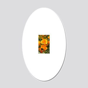Poppies (Eschscholzia califo 20x12 Oval Wall Decal