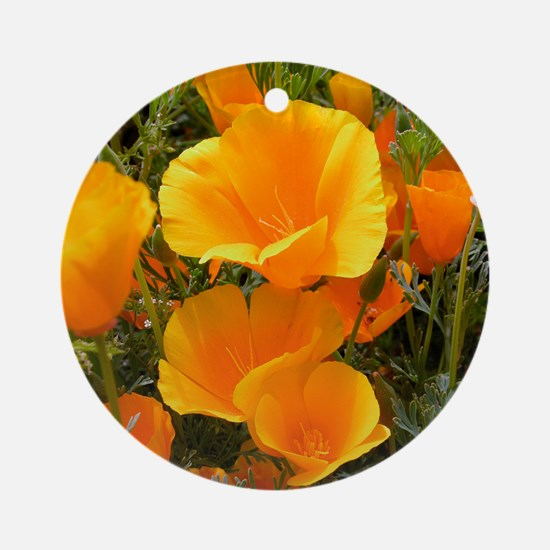 Poppies (Eschscholzia californica) Round Ornament