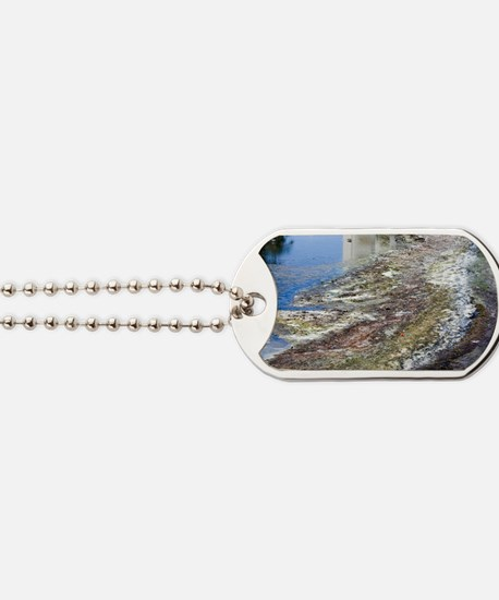Polluted river Dog Tags