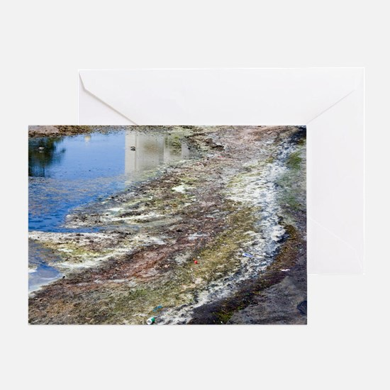 Polluted river Greeting Card