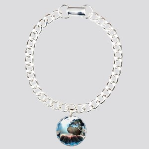 Polar ice caps melting,  Charm Bracelet, One Charm