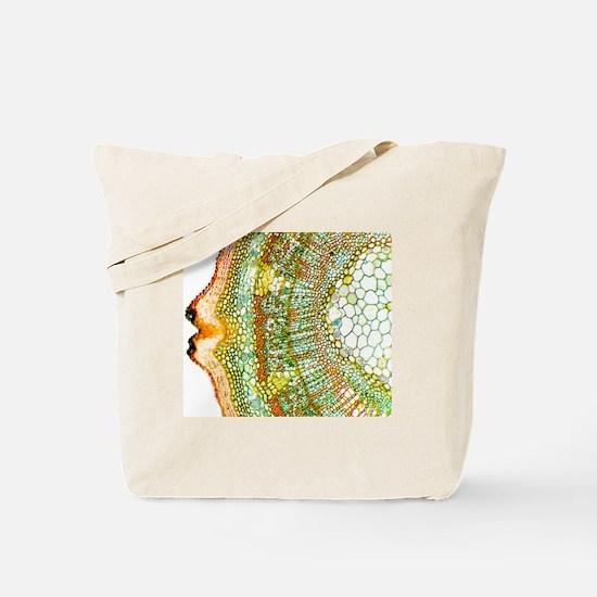Plant breathing pore, light micrograph Tote Bag