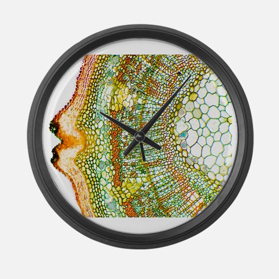 Plant breathing pore, light micro Large Wall Clock