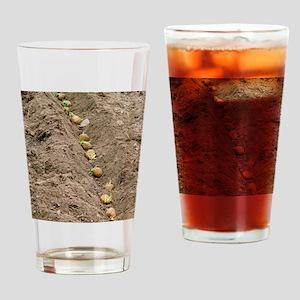 Planting potatoes Drinking Glass