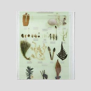 Plant group specimens, artwork Throw Blanket