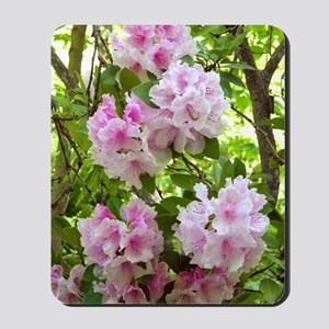 Pink rhododendron (Rhododendron sp.) Mousepad