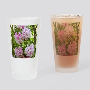 Pink rhododendron (Rhododendron sp. Drinking Glass
