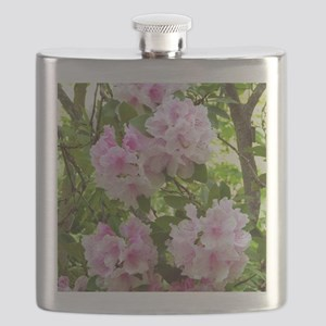 Pink rhododendron (Rhododendron sp.) Flask
