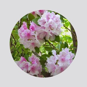 Pink rhododendron (Rhododendron sp. Round Ornament