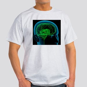 Pineal gland in the brain, artwork Light T-Shirt