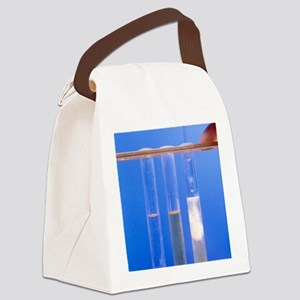 Phenylamine reactions Canvas Lunch Bag
