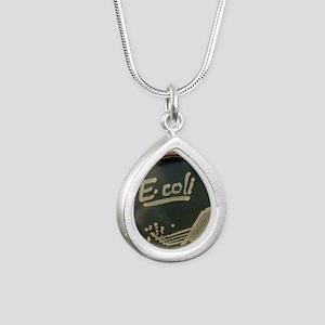 Petri dish culture of E. Silver Teardrop Necklace