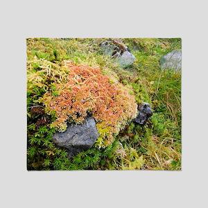 Peat moss (Sphagnum sp.) Throw Blanket