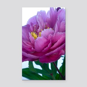 Peony flower (Paeonia sp.) Rectangle Car Magnet