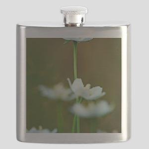 Parnassia palustris flowers Flask
