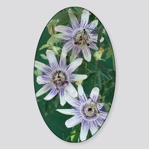 Passion flowers Sticker (Oval)