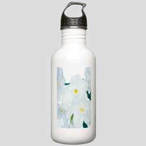 Paperwhite daffodils ( Stainless Water Bottle 1.0L