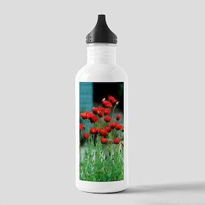 Papaver somniferum 'Bu Stainless Water Bottle 1.0L