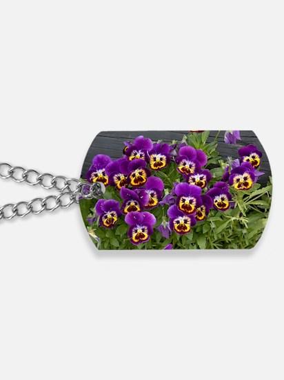 Pansies (Viola sp.) Dog Tags
