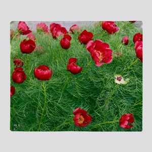 Paeonies (Paeonia tenuifolia) Throw Blanket