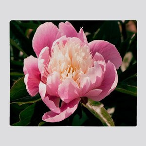 Paeonia lactiflora 'Chun Xiao' Throw Blanket