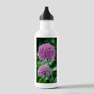 Ornamental onion (Alli Stainless Water Bottle 1.0L