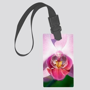 Orchid flower Large Luggage Tag
