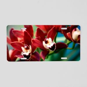 Orchid (Cymbidium hybrid) Aluminum License Plate