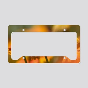 Orange coneflower (Echinacea  License Plate Holder