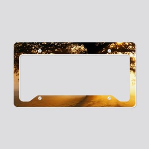 Oak tree at sunrise License Plate Holder