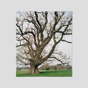 Oak tree Throw Blanket