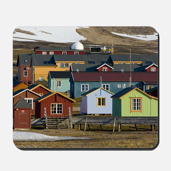 Ny-Alesund research station Mousepad