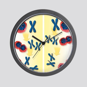 Normal and abnormal chromosomes, artwor Wall Clock