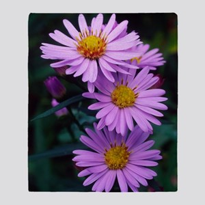 New York aster flowers (Aster sp.) Throw Blanket