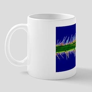 Nettle leaf in polarised light Mug