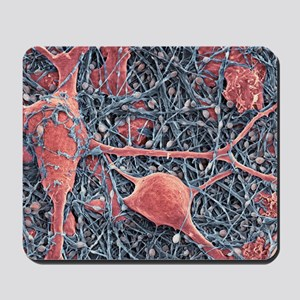 Nerve cells and glial cells, SEM Mousepad