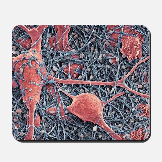 Nerve cells and glial cells, SEM Mousepad