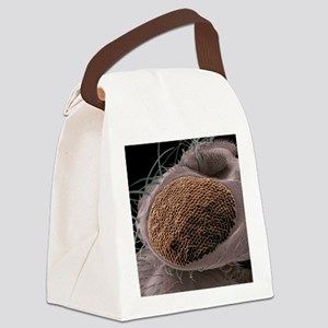 Mutant fruit fly compound eye, SE Canvas Lunch Bag