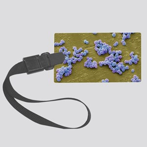 MRSA bacteria, SEM Large Luggage Tag